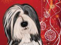 No. 40-2 Christmas card-red background  Available for purchase as card or other items.  I can draw your DOG for you too!  black Beardie face, gorgeous eyes!  Christmas card!