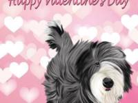 No. 43-13 Happy Valentine's Day-words  Available for purchase as card or other items.  I can draw your DOG for you too!  Pretty in pink!  Valentine's Day card.  Words can be changed or removed, if you would like!