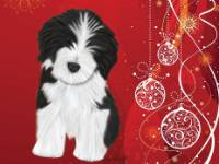 No. 5-2 Puppy christmas card-red background  Available for purchase as card or painting or other items.  I can draw your DOG for you too!  Bearded Collie pup on a red background with white oraments and white swirls!